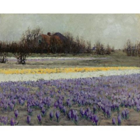 Un champ de crocus (George Hitchcock)