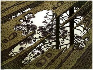 Maurits Cornelis Escher - flaque