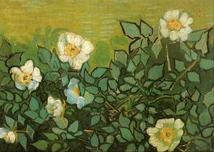 Vincent Van Gogh - sauvage roses