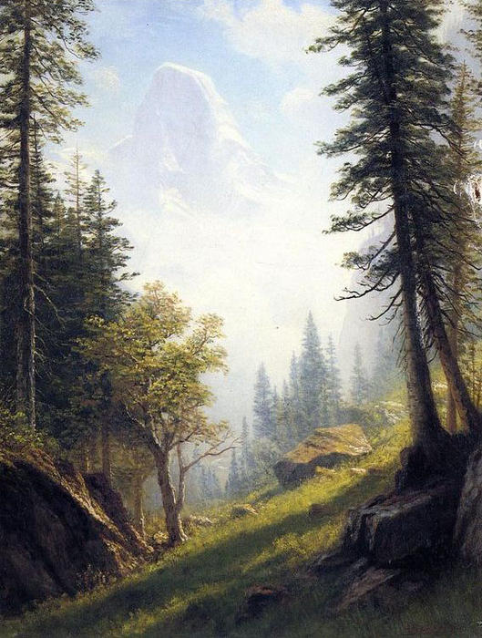 Parmi les Alpes bernoises de Albert Bierstadt (1830-1902, Germany) | Reproduction Peinture | WahooArt.com