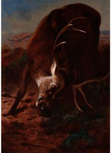 Archibald Thorburn - Red Stag effilochage