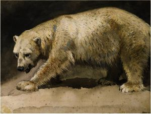 Archibald Thorburn - le l-ours polaire