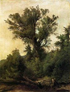 Asher Brown Durand - Flux Woodland