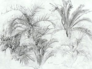 William Trost Richards - Palms