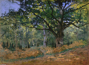 Claude Monet - Le Oak Bodmer, Fontainebleau