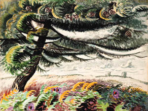 Charles Ephraim Burchfield - Windblown Hemlock