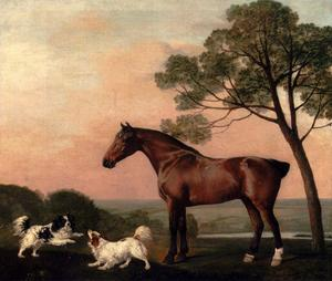 George Stubbs - A Hunter Bay avec deux épagneuls
