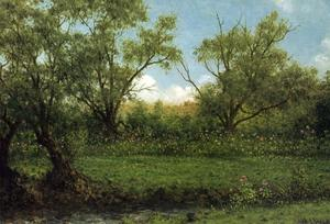 Martin Johnson Heade - Asters dans un champ (aka Brookside)