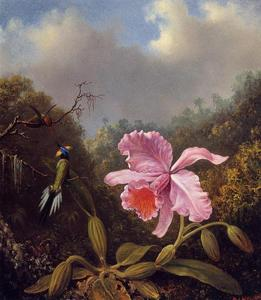 Martin Johnson Heade - fighting colibris rose Orchidée