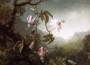Martin Johnson Heade - Perché Hummingbird près fleurs de la passion