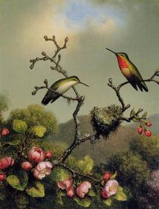 Martin Johnson Heade - rubis `throat` des amérique du nord
