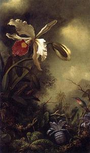 Martin Johnson Heade - White Orchid et Hummingbird