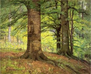 Theodore Clement Steele - hêtre arbres