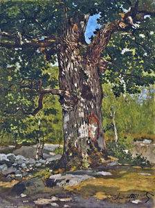 Claude Monet - Le Oak Bodmer
