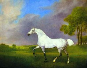 George Stubbs - a gris cheval