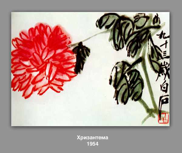 Chrysanthème, 1954 de Qi Baishi (1864-1957, China)