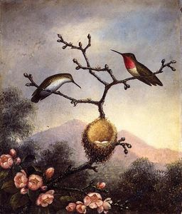 Martin Johnson Heade - Ruby Gorges avec Apple Blossoms