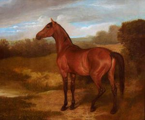 Jacques Laurent Agasse - Poulain de  jument  et  arabe  cheval  -