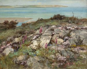 William Stewart Macgeorge - Digitales et de la mer Pinks