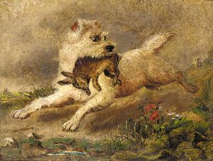 George Armfield (Smith) - Une Terrier avec un Lapin