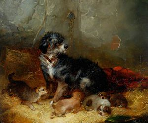 George Armfield (Smith) - Avec Dog Puppies