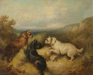 George Armfield (Smith) - Trois chiens