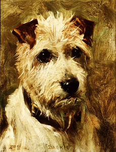 John Emms - Portrait Of A Terrier