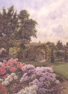 Ernest Arthur Rowe - Rhododendrons