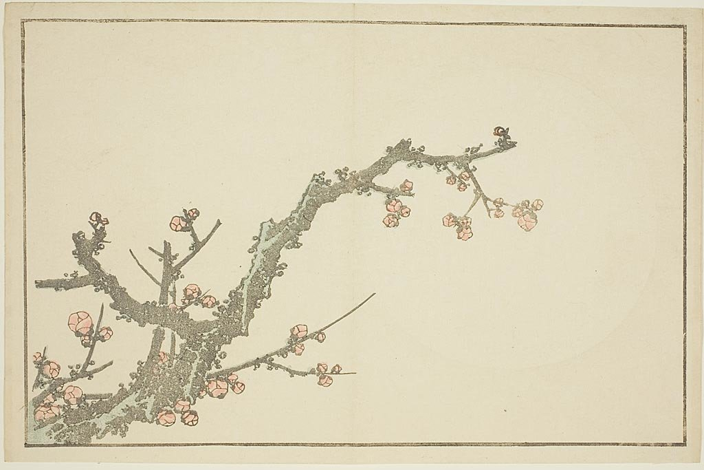 Blooming Prunier de Katsushika Hokusai (1760-1849, Japan) | Copie Tableau | WahooArt.com
