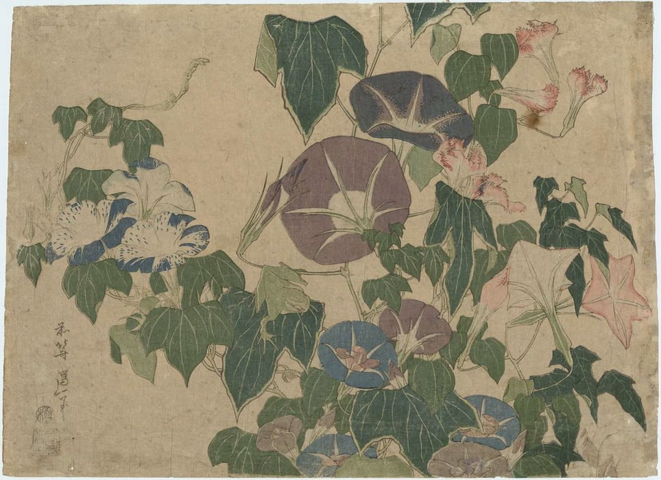 morning glories et arbre Grenouille de Katsushika Hokusai (1760-1849, Japan) | Reproductions D'art Sur Toile | WahooArt.com