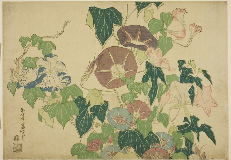 morning glories Et Tree-frog de Katsushika Hokusai (1760-1849, Japan) | Reproduction Peinture | WahooArt.com