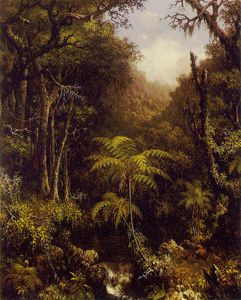 Martin Johnson Heade - Forestier brésilien