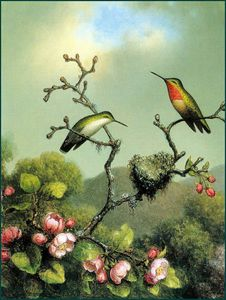 Martin Johnson Heade - rubythroat du nord Amérique