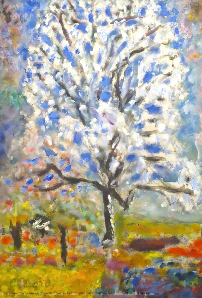 l`amandier en fleurs ( l`amande arbre fleur ) , - de pierre bonnard