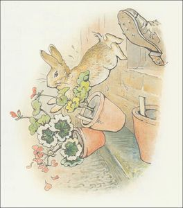 Beatrix Potter - Peter Rabbit 20a - (11x12)