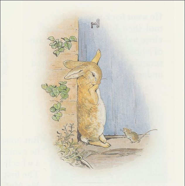 Peter Rabbit 23a - (11x11) de Beatrix Potter (1866-1943)