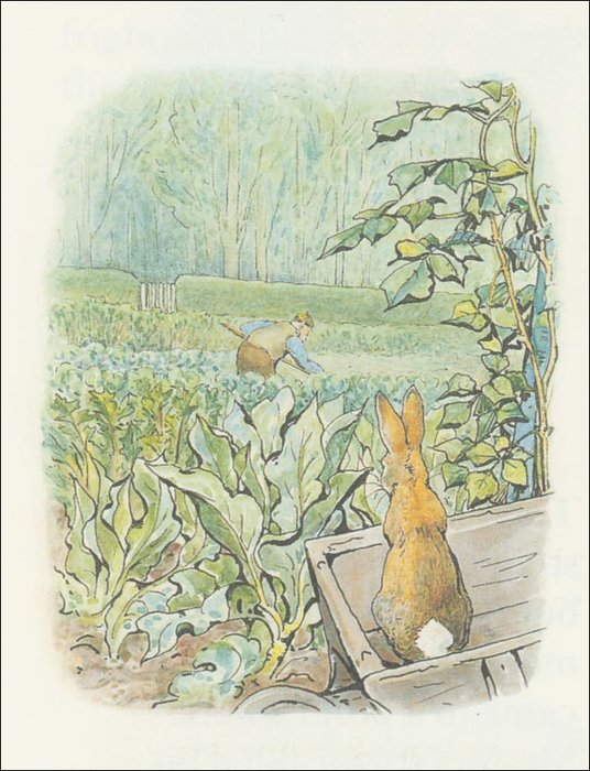 Peter Rabbit 26a - (11x13) de Beatrix Potter (1866-1943)