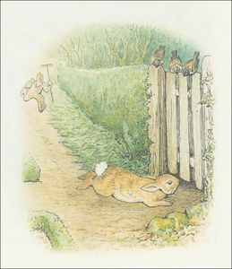 Beatrix Potter - Peter Rabbit 27a - (11x12)