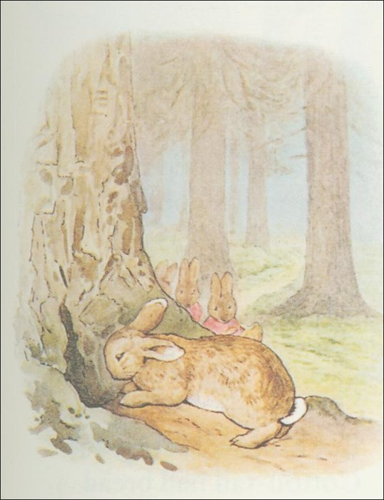 Peter Rabbit 29a - (11x13) de Beatrix Potter (1866-1943)