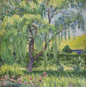 Blanche Hoschedé-Monet - Giverny, Willow et Roses
