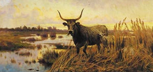 Aurelio Tiratelli - Water Buffalo dans la campagne romaine