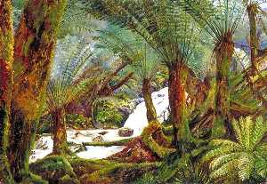Marianne North - un naturel fernery à victoria
