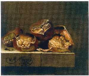 After Adriaen Coorte - anglaise marrons