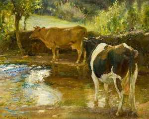Alfred James Munnings - Vaches au Eau , Lamorna