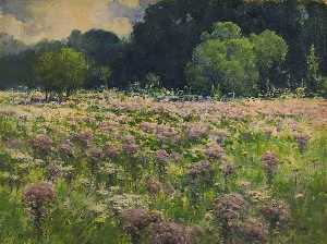 William Henry Holmes - Domaine de l joe pie weeds ( Fierte de le prairie )