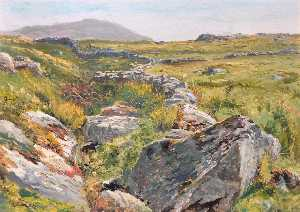 Achat Reproductions D'art | Cilgwyn , Nantlle, 1883 de Frederick William Hayes | WahooArt.com