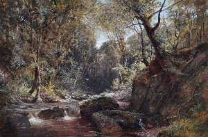 Frederick William Newton Whitehead - the lyn , devon nord