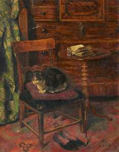 Andrew Young - Chat sur une  chaise